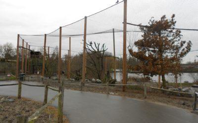 Diergaarde Blijdorp – Vulture aviary