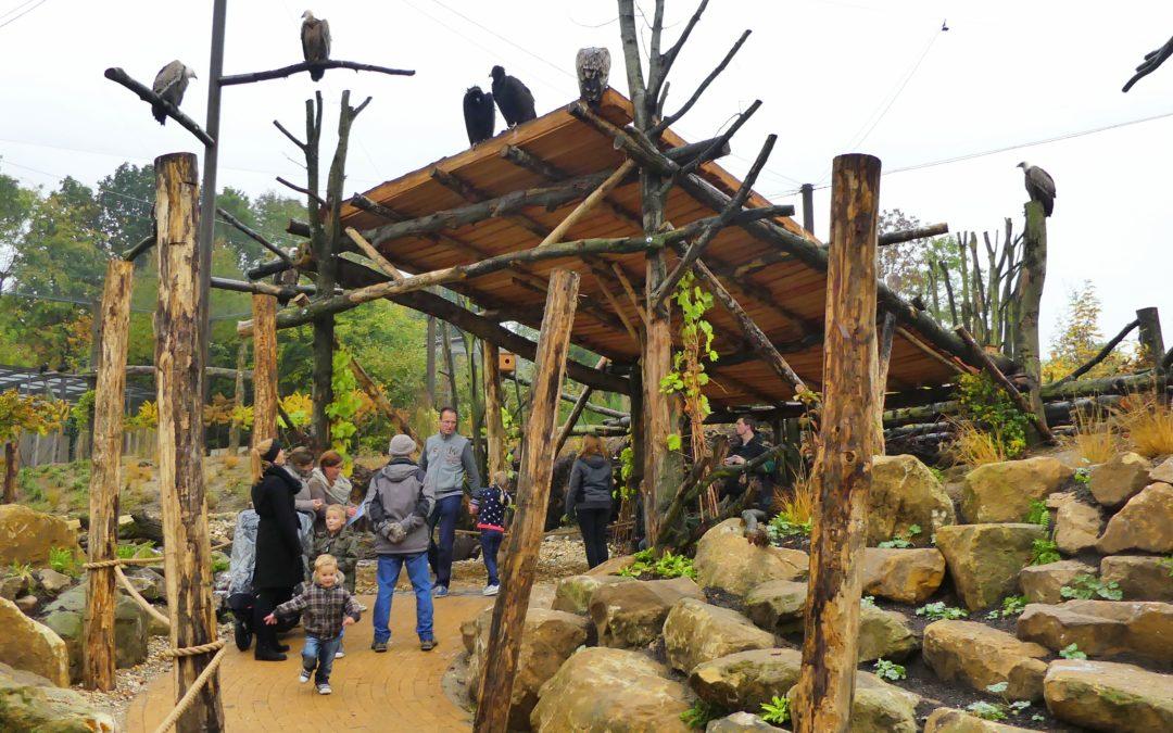 GaiaZOO – TAIGA aviary